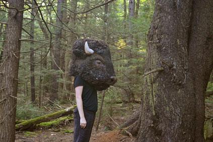 rewilding_blog